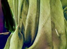 شال حجاب نسائي لون زيتي