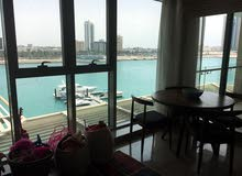 Specious 3 BR FF Apartment in Reef Island For Rent