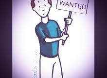 شاب عماني ابحث عن عمل اضافي فتره المساء