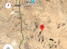 أرض 100 دونم للبيع في القنيطرة حوض الطفلاوي جنوب المطار