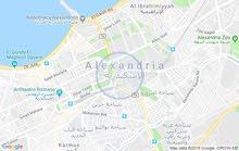 فرصه لاصحاب الزوق والفخامه والرقي   شقه  230 متر صافى جليم بجوار قصر المرغنى باش