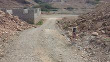 ارض للبيع فوه المتضررين المساكن اتجاه مسجد بحر النور حدود الوادي