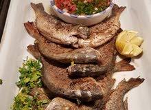 معكم شيف طباخ رئيسي تونسي جميع مأكلوت الغربي والعربي