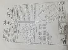 للاستثمار ارض في شمال غرب ريسوت