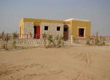خدمات تشيك مزارع بناء سلاسل حجريه استصلاح أراضي تزويد تراب احمر بناء بيوت ريفيه