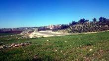 قطعة ارض مميزة للبيع في منطقة ناعور دونمين سكن ( أ ) اخضر مربعة وعالية منطقة قصور و فلل