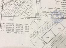 قطعة ارض للبيع في ولاية ينقل ( العلو)