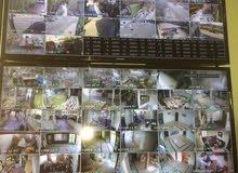 كاميرات مراقبة Dahya