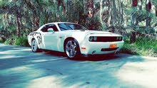 Best price! Dodge Challenger 2010 for sale