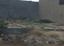 البودزيرة > حي السلام> المنطقة الصناعية : أمتداد شارع الجامع