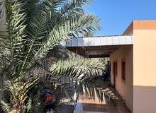 بيت للايجار في خورالحمام home for rent in saham