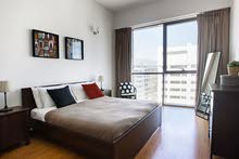 دبي البرشاء 1 مول الامارات غرفة وصالة مفروشة مع بلكونة - ايجار شهري
