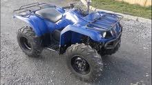 grizzle 2015 350 cc