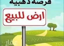 أرض فضاء بميدان الاسكندرية
