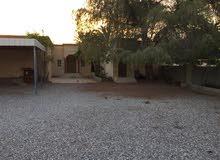 منزل شعبي ويوجد بها حديقه منزل ومضله للسيارات
