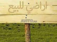 أرض للبيع الدار البيضاء