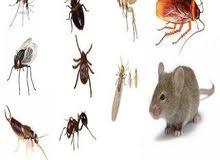 مكافحه جميع انواع الحشرات