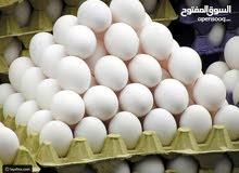 بيض بلدي فيومي مخصب بإذن الله تعالى