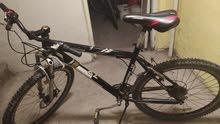 satılık Bisiklet shimal daytona -09  بسكليت للبيع