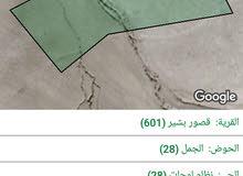 للبيع من أراضي الكرك قصور بشير