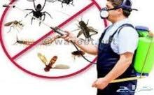 شركة مكافحة جميع انواع الحشرات والنظافه العامه ونقل الاثاث