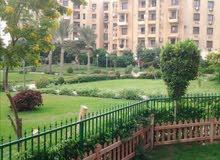 شقة للايجار في مدينة الرحاب ارضي بحديقة