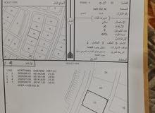 أرض سكنية في ولاية المصنعة منطقة المراغة تبعد عن الشارع السريع بضعة أمتار بسيطة