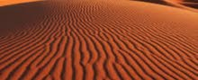 Red sand or dunes sand and sweet cultivation sand with delivery in all oman