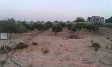 أرض قريبه من محطة وقود كشيم و قبل تقاطع السيده زينب ..مساحة الأرض 2500 متر