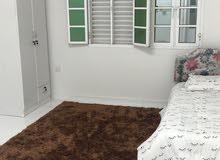 rent superclean rooms