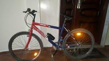 دراجة هواءية ايطالية..رقم 26