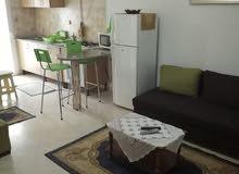 شقة مفروشة للايجار غرفتين و صالة بالعوينة