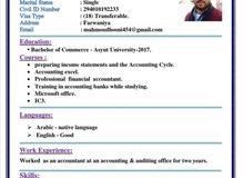 محاسب يبحث عن دوام يجيد العمل على برنامج الاكسيل المحاسبي ويجيد اللغه الانجليزيه