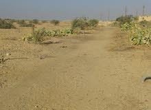 قطعة أرض متميزة على الطريق الصحراوي الغربي 77 فدان