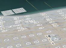 صور شياع (خرابه)جهه  البحر    810 متر سوبر كورنر ثاني ارض من الشارع العام