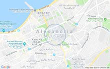 apartment for rent located in Alexandria
