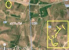 ارض تجارية على  طريق جابر الدولي بين الرمثا و جابر واجهة 75 متر