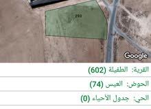 أرض مساحتها 5 د للبيع الطفيله العيص