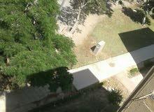 شقة 65م للبيع امام باب جامعة بنى سويف
