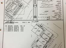 ارض سكني تجاري بالقصف ولاية الخابورة مساحتها 200 متر