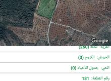 ارض زراعية ذات اطلالة في دبين