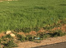 قطعة ارض للبيع في شفا بدران حوض مرج الفرس