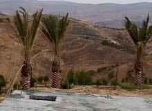 شاليه في مدينة جرش خلف جامعة جرش الاهليه