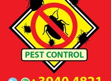 PEST CONTROL SERVICE (ODOURLESS - Quality Assured!