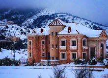 عقار كامل مع قصر مفروش اربع طوابق
