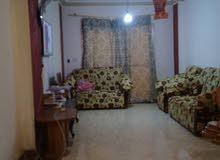 شقة مميزة للبيع بزهراء مدينة نصر