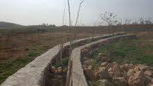 مزرعه في عراق لامير