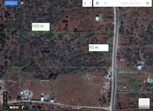 أرض للبيع 5 هكتار في الوسيطه