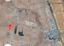 أرض للبيع مساحه 4 دونم طريق المطار بسعر للدونم 16500