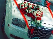 2010 للمناسبات  اي سياره  شامل الزينه  70